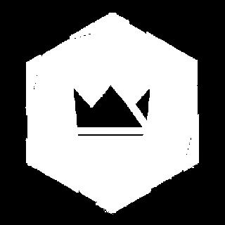 logo blanc sas